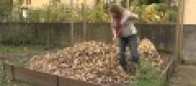 Le paillage et les plantes couvre-sol pour un jardin naturel